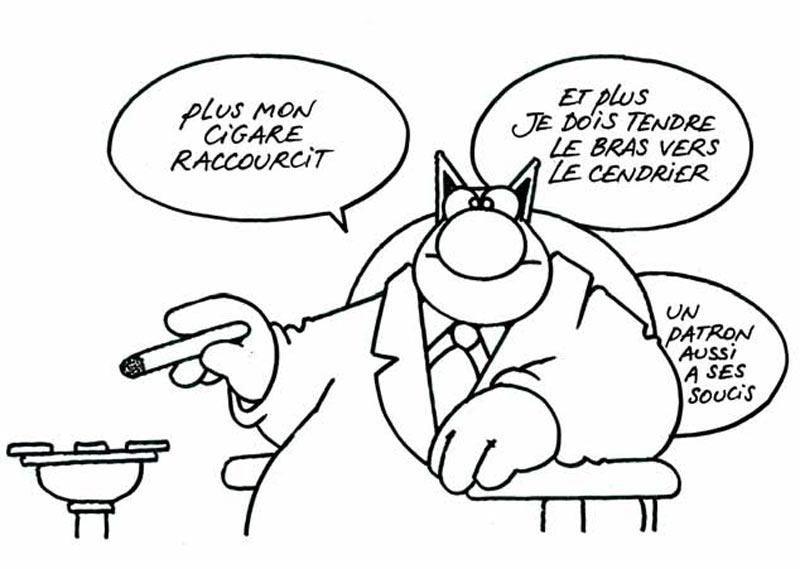 Topic des chats - Page 2 486