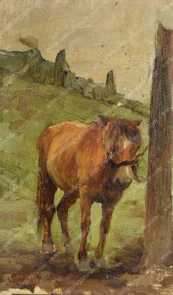 MAKO Serge Alexandrovitch (1885-1953). Cheval au champ. Huile sur toile contrecollée…