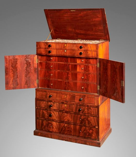 Collectors chest: A rare Georgian colonially built mahogany collectors chest wit…