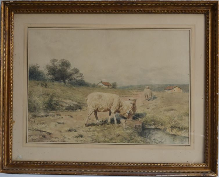 William Powell DERRICK (1857 1941) Moutons à l'abreuvoir Aquarelle signée en bas…