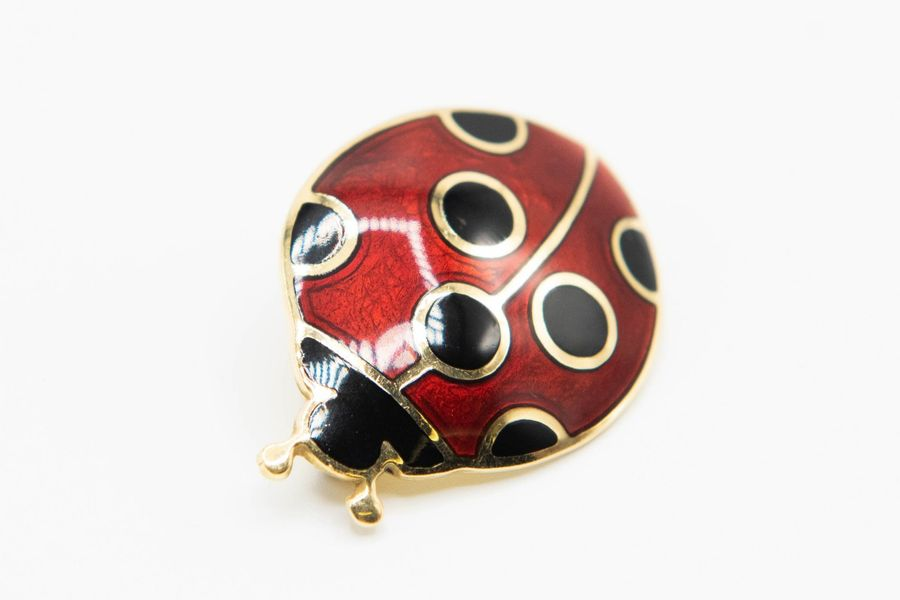 AN 18CT YELLOW GOLD AND ENAMEL BROOCH, formed as a ladybird, set with red enamel…