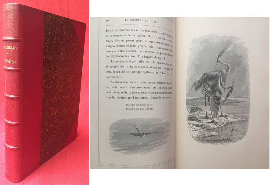 Jules MICHELET L'Oiseau. Paris, Hachette, 1867, in-4 de 424 pages illustrées de 210…