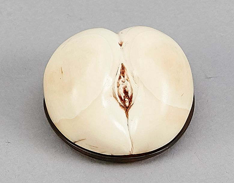 Ivory box with tortoiseshell lid, probably a snuff box, England, 19th century, p…