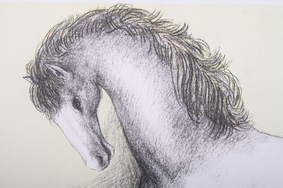 Domenico Purificato ( 19 15 1984) Horsecolor lithograph on paperP.A., signed in …