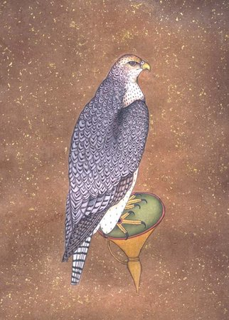 The Majestic Eagle The eagle is the king of falcons, the most intelligent as wel…