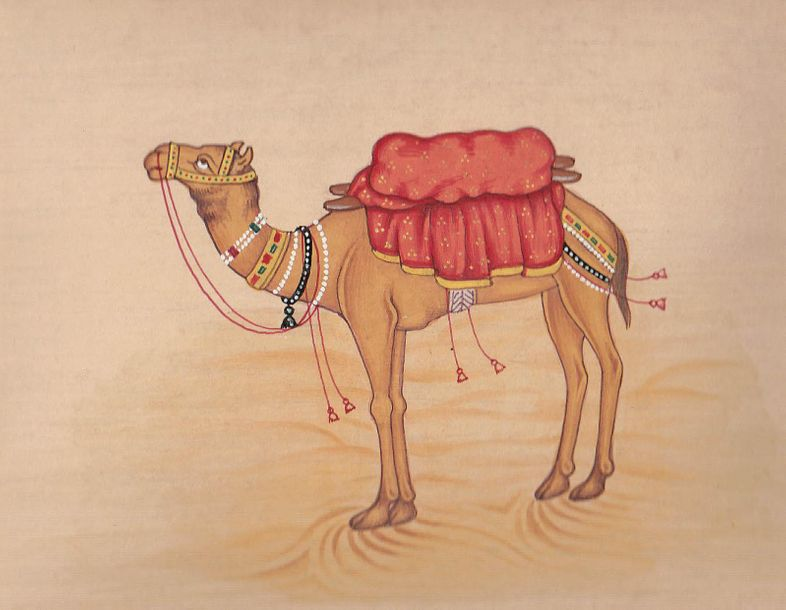 Camel A watercolor fine arts composition laid out on a paper holding the traditi…