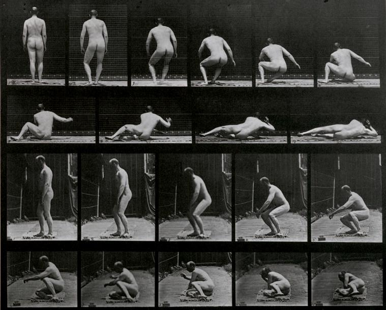 EADWEARD MUYBRIDGE 1830-1904 Animal Locomotion, Pl. 257, 1887. Collotype, légende…