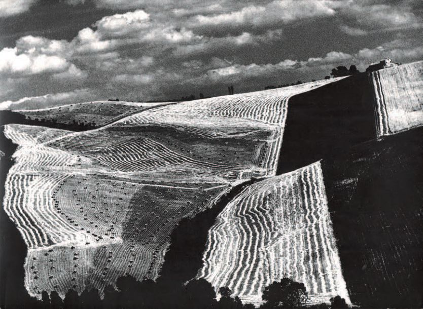 MARIO GIACOMELLI 1925-2000 Paysage, ca. 1950-1980. Tirage argentique ca. 1980, tampons…