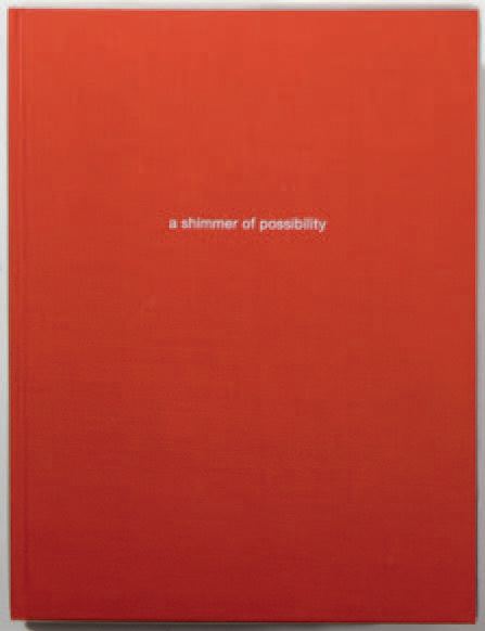 """PAUL GRAHAM 1964 """"Shimmer of possibility"""", Steidlmack, 2007, non paginé. 12 ouvrages…"""