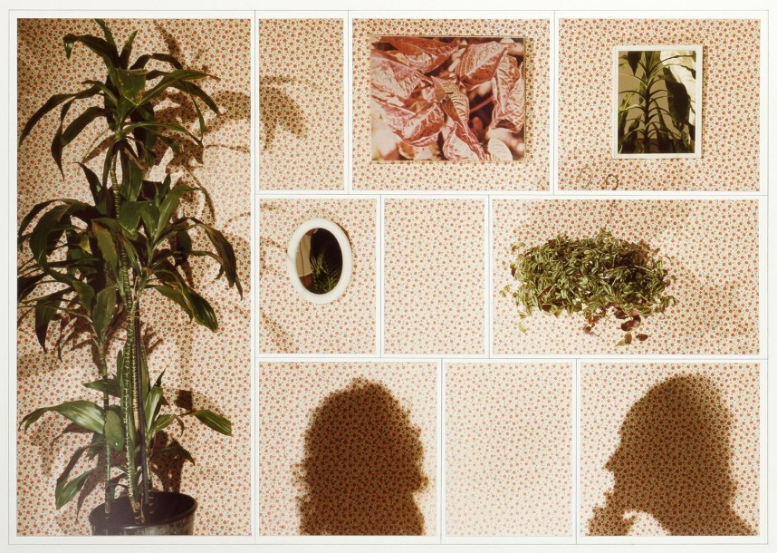 James Collins (né en 1939) Study for Pink Room with Shadows, 1979 Photographie couleur.…
