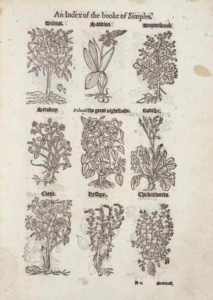 BULLEIN (William). Bulwarke of Defence against all Sicknesse, Soarenesse, and Wo…
