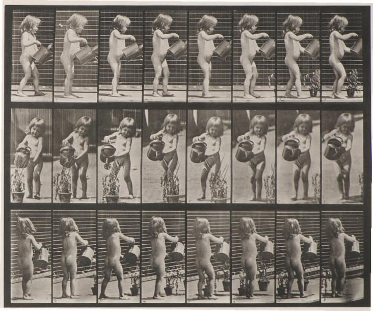 Eadweard MUYBRIDGE (1830-1904) Animal Locomotion (petite fille à l'arrosoir), 478…