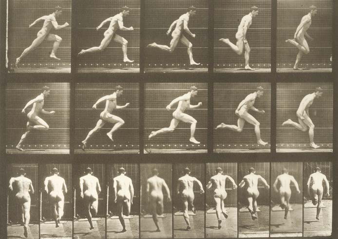 Eadweard MUYBRIDGE (1830-1904) Animal Locomotion (Homme courant) Collotype 23x31…