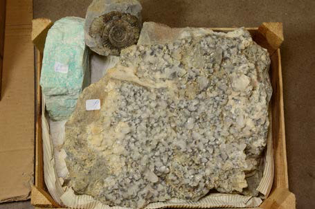 Lot avec calcite, amazonite et ammonite d'Angleterre