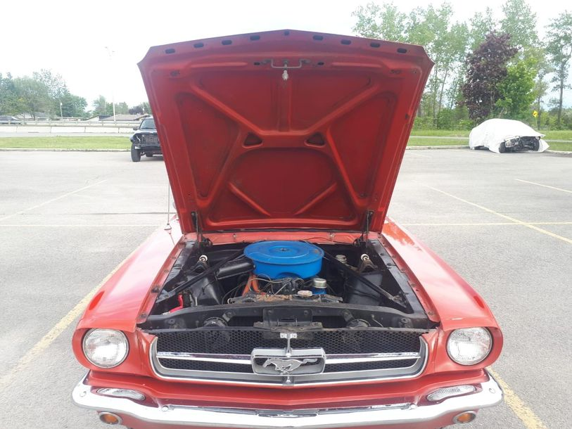 FORD MUSTANG Cabriolet 289, code C - 1965 N° de série: 5F08C650565 Documents: Canada,…
