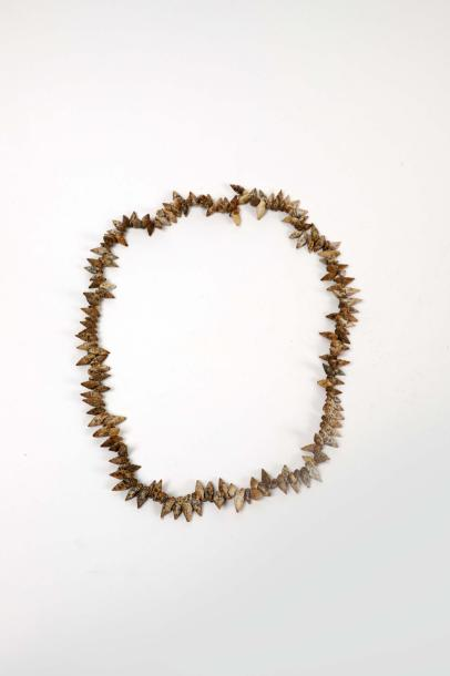 Couronne, Tahiti. Coquillages, cotonnade. D. 28,5 cm. Coquillages réunis en rangs…