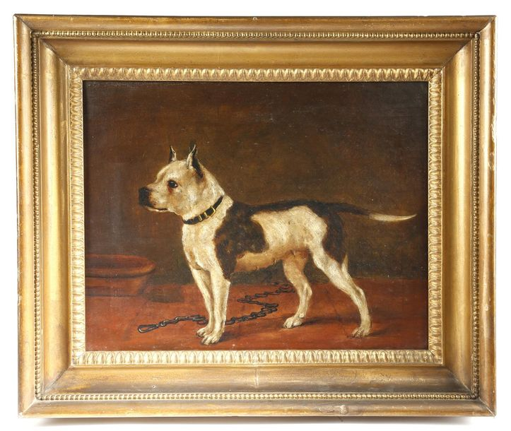 A NAIVE OIL PAINTING OF A BULLDOG LATE 19TH CENTURY oil on canvas, in a moulded …