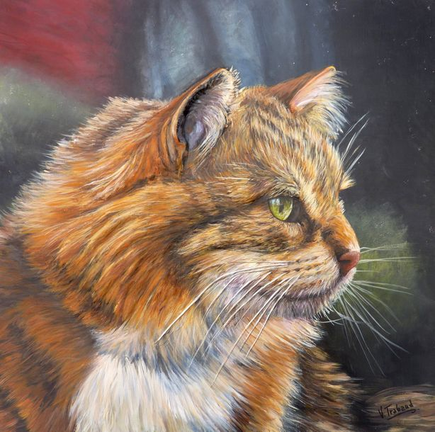 "TRABAUD Virginie ""Portrait de Chat Maine Coon"" Acrylique sculpture en relief au …"