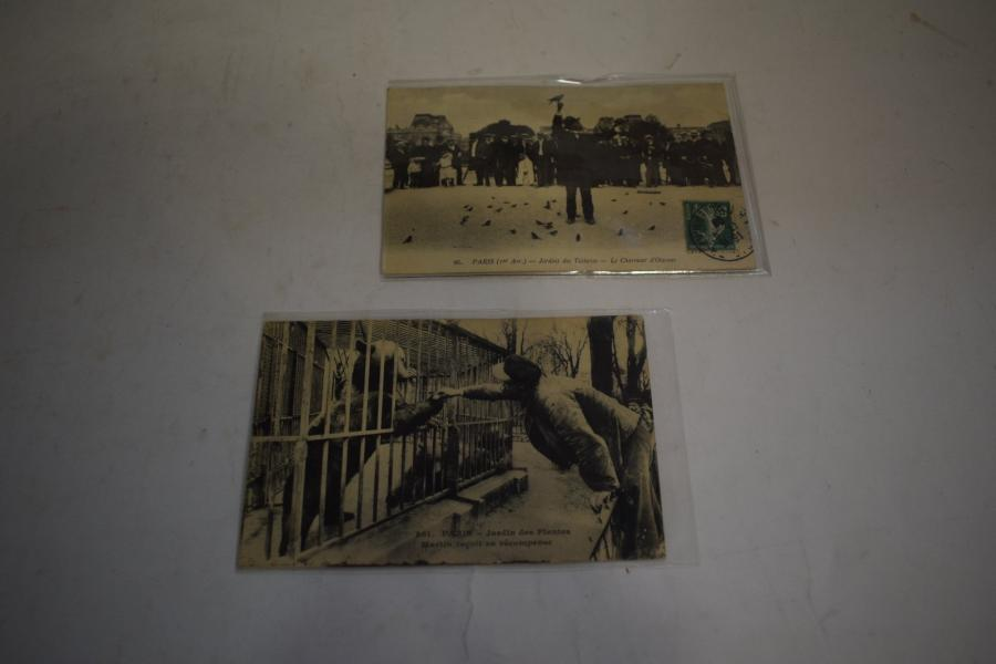 [ Cartes postales ] [ Animaux ] [ Paris ]  Ensemble de deux cartes :  Paris - Jardin…