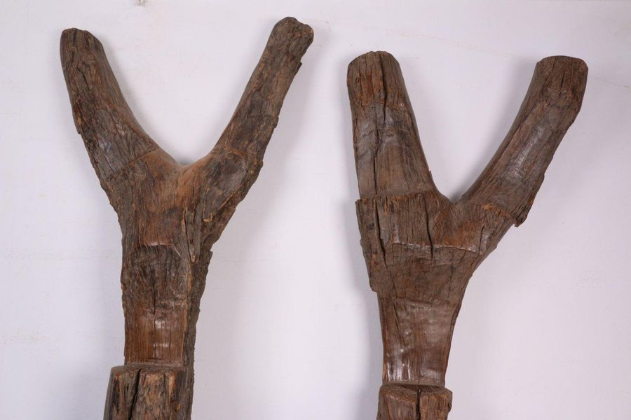 Mali, Dogon, two granery ladders, h. 238 and 232 cm. [2]