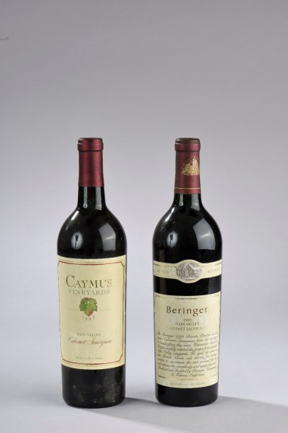 "Ensemble de 2 bouteilles : 1 bouteille NAPA VALLEY, ""Cabernet Sauvignon Private…"