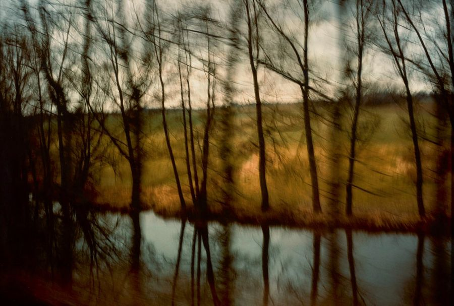 NAN GOLDIN (né en 1953) Trees by the River, Munich Cibachrome. 69 x 105.5 cm Provenance:…
